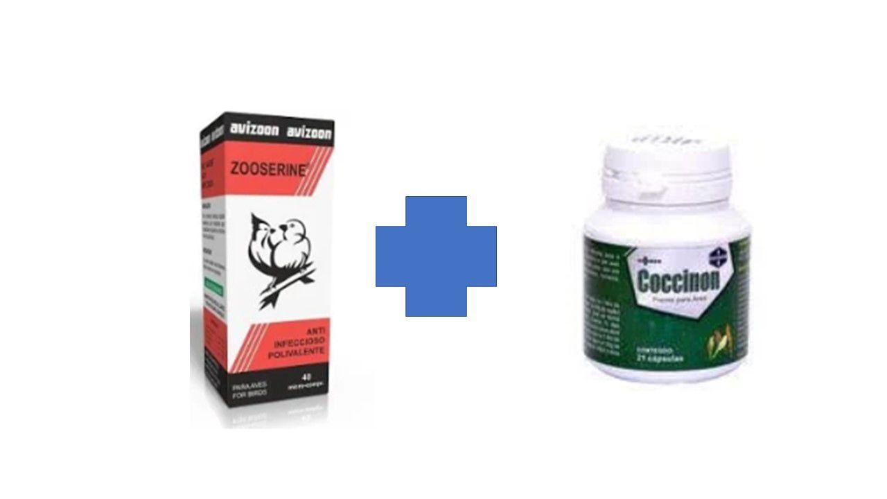 Kit Zoozerine - 40 micro pirolas - avizoon + Coccinon 21 capsulas