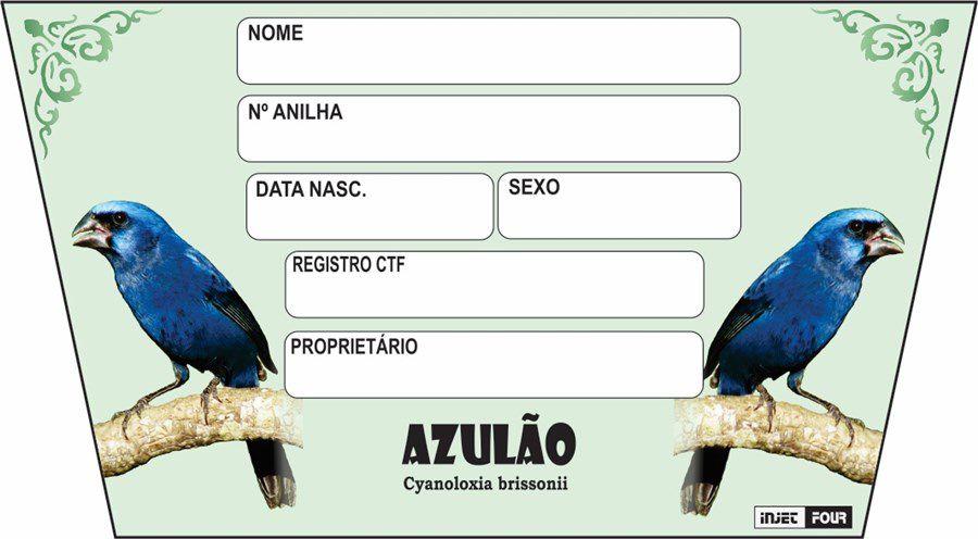 Placa de Identificação Luxo Azulao - 527 AZ