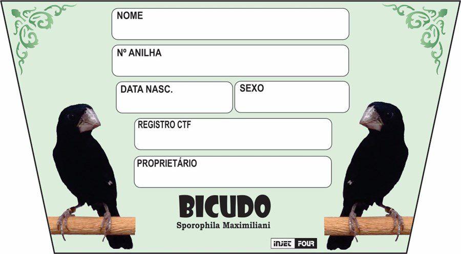 Placa de Identificação Luxo Bicudo - 527B