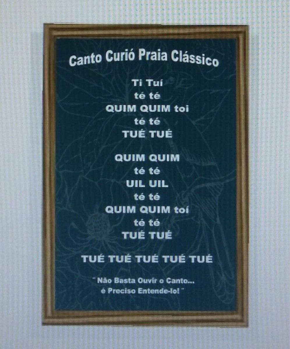 QUADRO CANTO DO CURIO