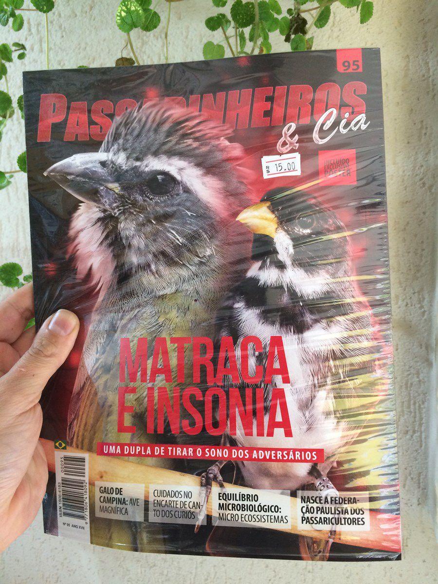 Revista N95
