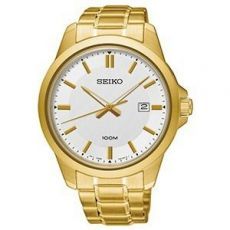 Relógio Seiko Masculino Sur248b1 B1kx