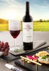 Conjunto de Taças Para Vinho e Água Luxxor 480 ml com Paramount