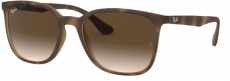 Óculos de Sol Ray-Ban Rb4316l 894/13 56-19