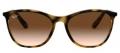 Óculos de Sol Ray-ban RB4317L 710/13 Marrom havana