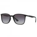 Óculos De Sol Ray Ban Unissex RB4316L 622/8G 56-19 145