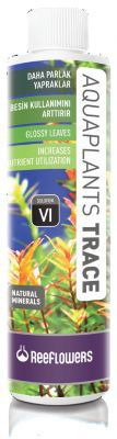 Reeflowers Aquaplants Trace VI