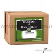 Revestimento RR(RANSOM & RANDOLPH) Plasticast - 22,7Kg