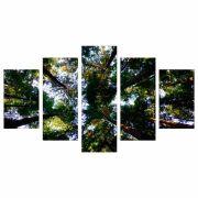 Conjunto de 5 quadros decorativos em Canvas - Floresta