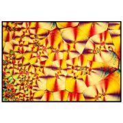 Quadro decorativo Abstrato em canvas - AGAB017