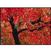 Quadro decorativo Árvores em canvas - AGAR015