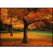 Quadro decorativo Árvores em canvas - AGAR016