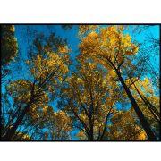 Quadro decorativo Árvores em canvas - AGAR018