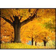 Quadro decorativo Árvores em canvas - AGAR019