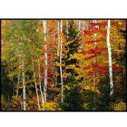 Quadro decorativo Árvores em canvas - AGAR022