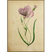 Quadro decorativo Flores em canvas - AGFL007