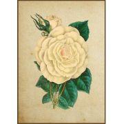 Quadro decorativo Flores em canvas - AGFL014