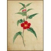 Quadro decorativo Flores em canvas - AGFL022