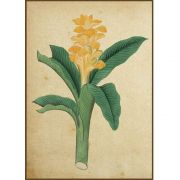Quadro decorativo Flores em canvas - AGFL027