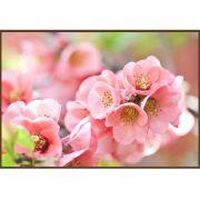 Quadro decorativo Flores em canvas - AGFL034