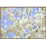 Quadro decorativo Flores em canvas - AGFL040