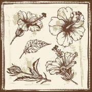 Quadro decorativo Flores em canvas - AGFL044