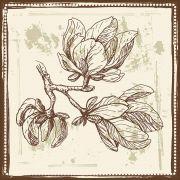 Quadro decorativo Flores em canvas - AGFL046