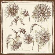 Quadro decorativo Flores em canvas - AGFL047