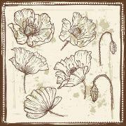 Quadro decorativo Flores em canvas - AGFL051