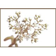 Quadro decorativo Flores em canvas - AGFL092