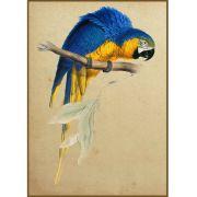 Quadro decorativo pássaro em canvas - AGPS007