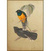 Quadro decorativo pássaro em canvas - AGPS009
