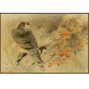 Quadro decorativo pássaro em canvas - AGPS013