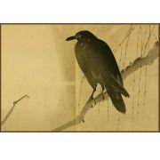 Quadro decorativo pássaro em canvas - AGPS014