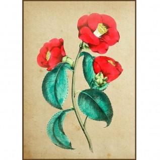 Quadro decorativo Flores em canvas - AGFL002