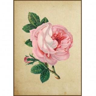 Quadro decorativo Flores em canvas - AGFL020