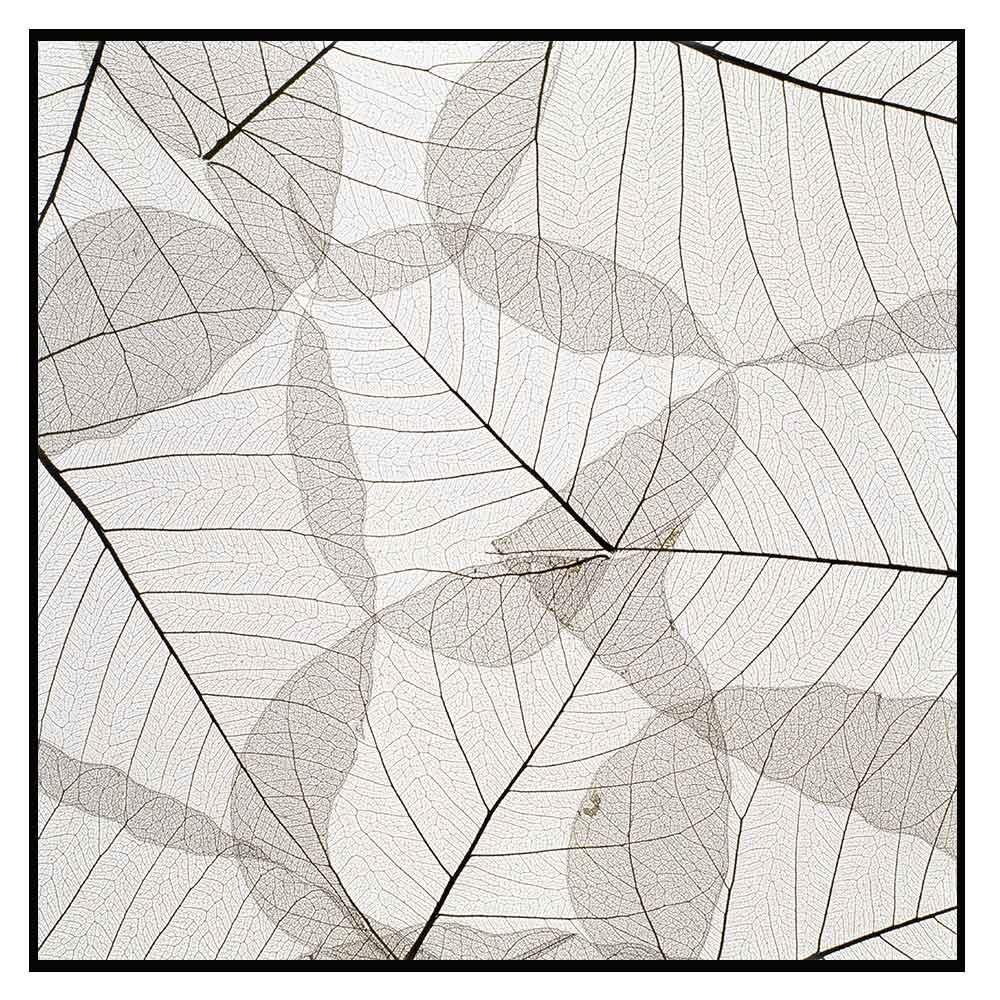 Quadro decorativo Abstrato em canvas - AGAB048