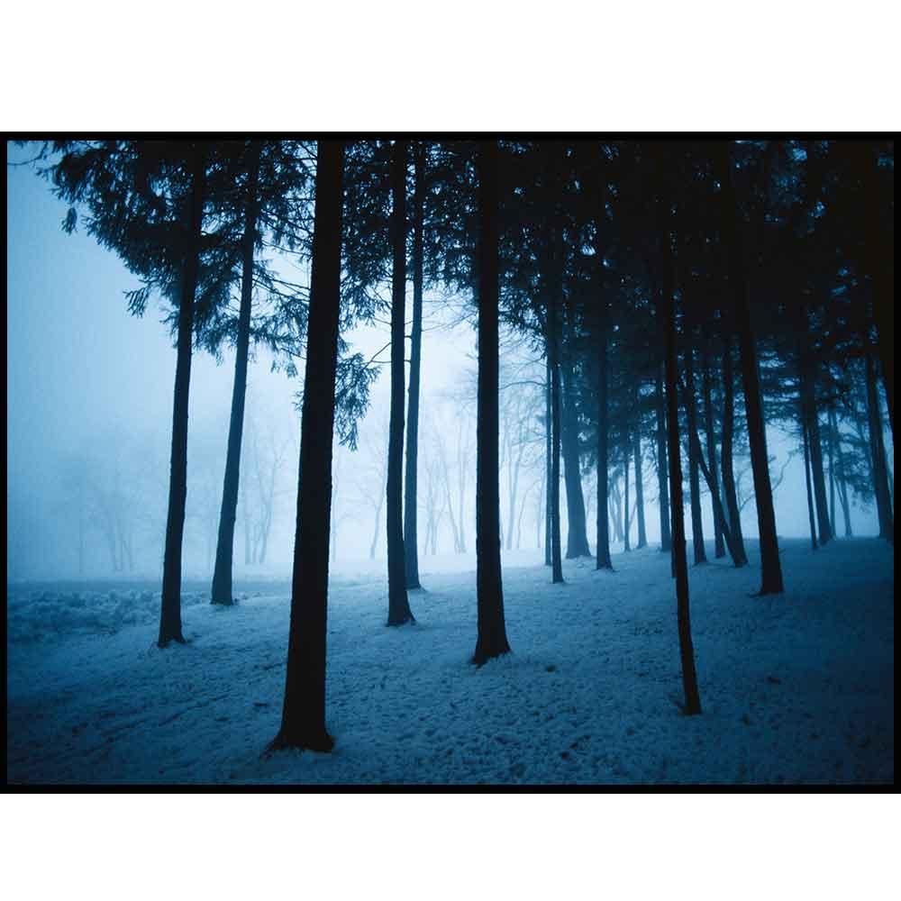 Quadro decorativo Árvores em canvas - AGAR005