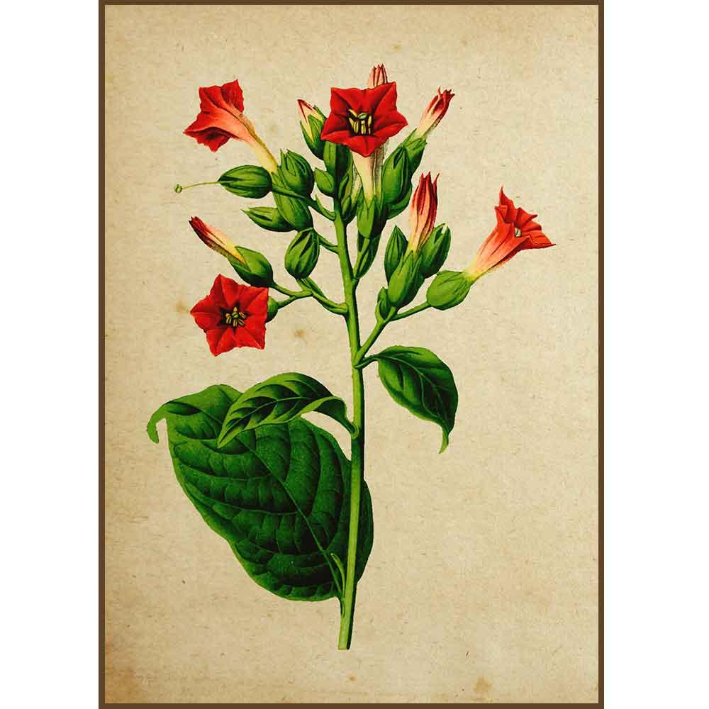 Quadro decorativo Flores em canvas - AGFL003