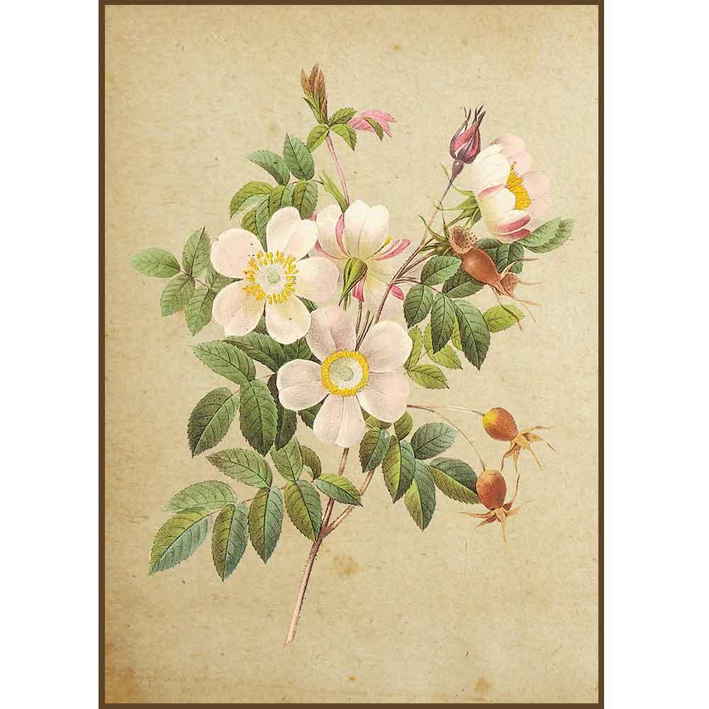 Quadro decorativo Flores em canvas - AGFL009