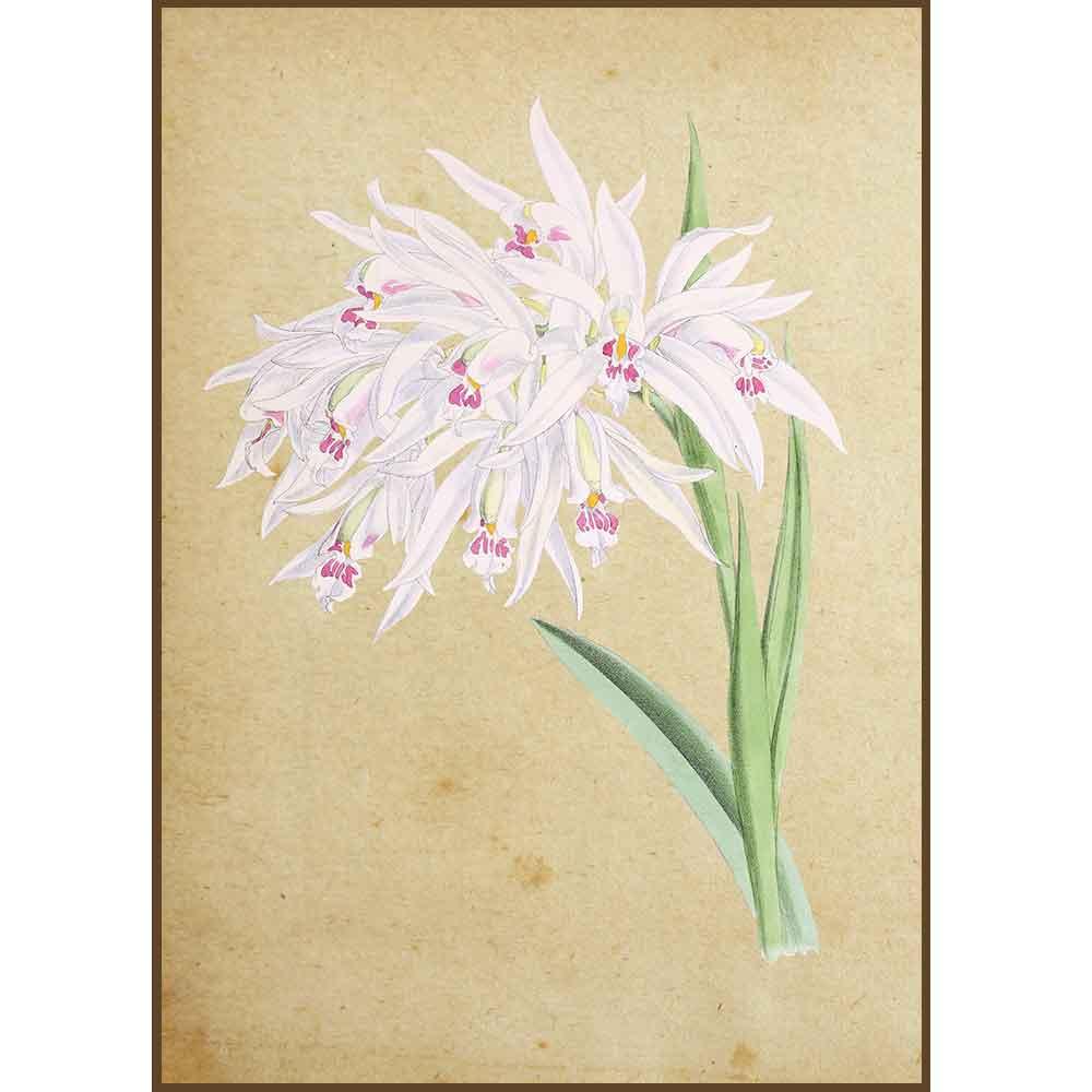 Quadro decorativo Flores em canvas - AGFL010