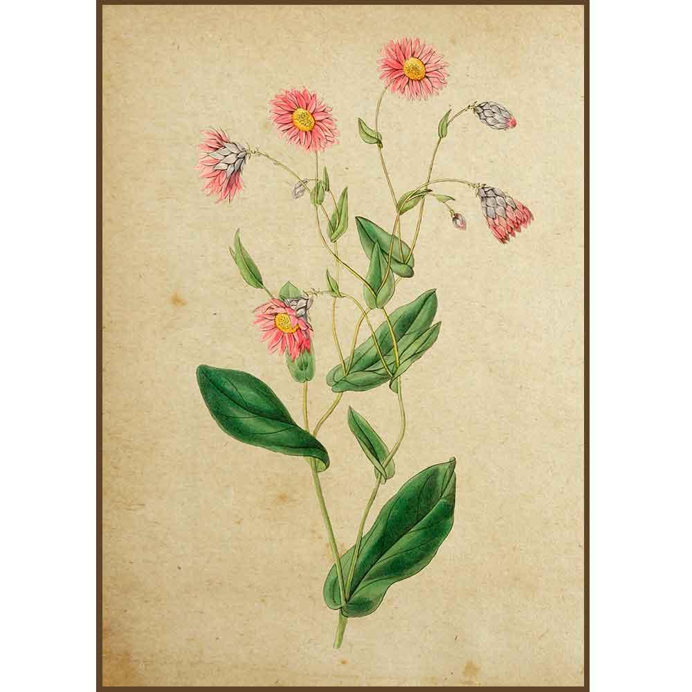 Quadro decorativo Flores em canvas - AGFL012