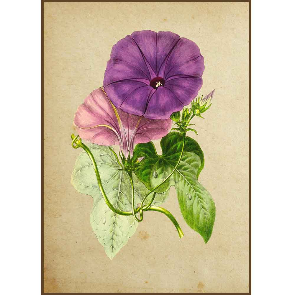 Quadro decorativo Flores em canvas - AGFL013
