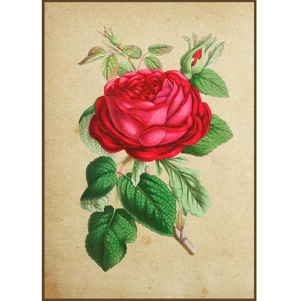 Quadro decorativo Flores em canvas - AGFL016