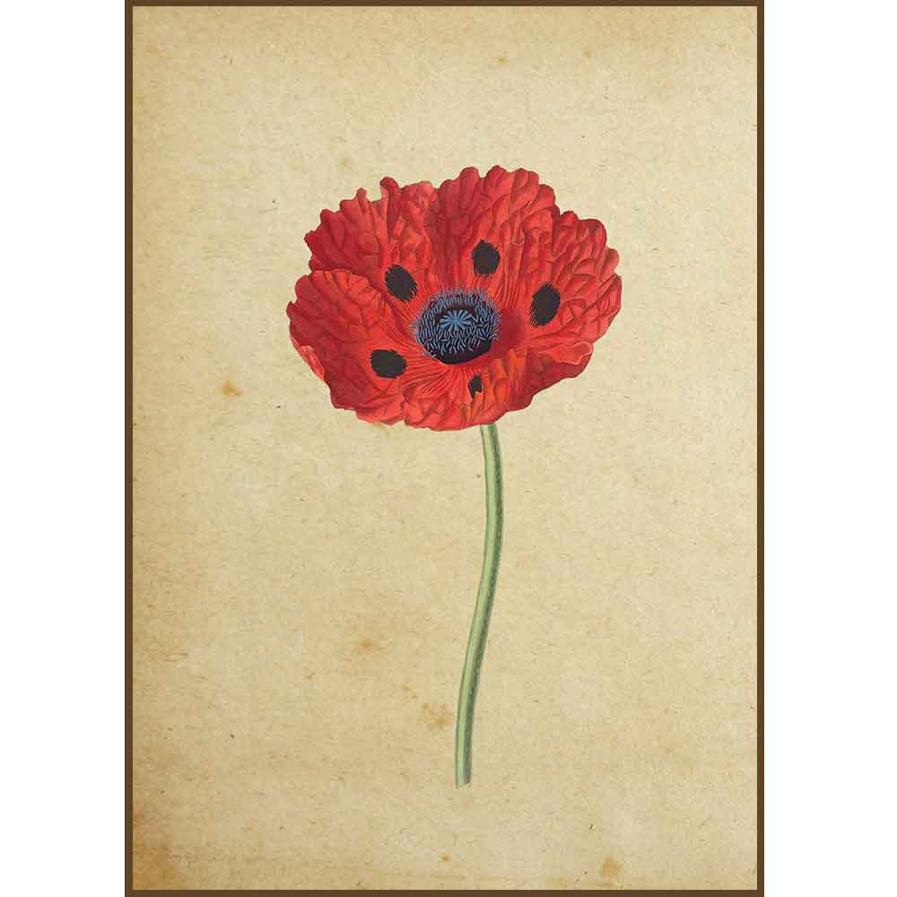 Quadro decorativo Flores em canvas - AGFL017