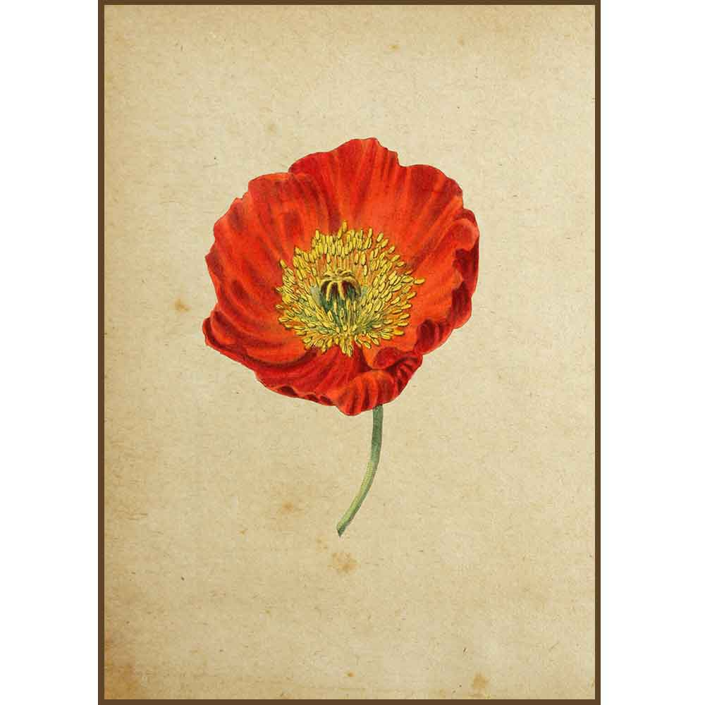 Quadro decorativo Flores em canvas - AGFL018