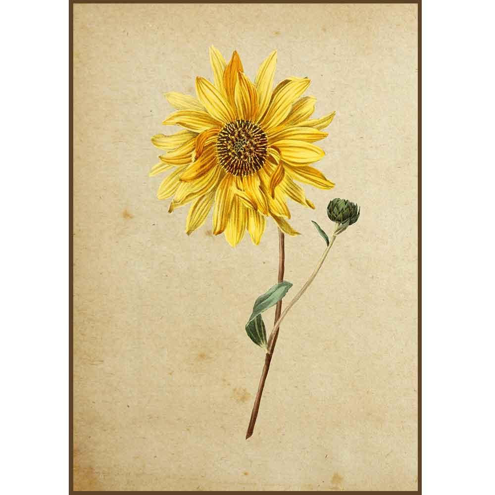 Quadro decorativo Flores em canvas - AGFL019