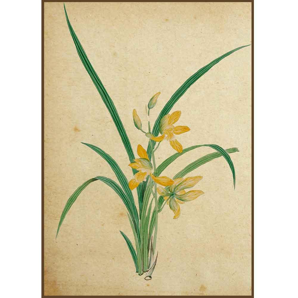 Quadro decorativo Flores em canvas - AGFL021
