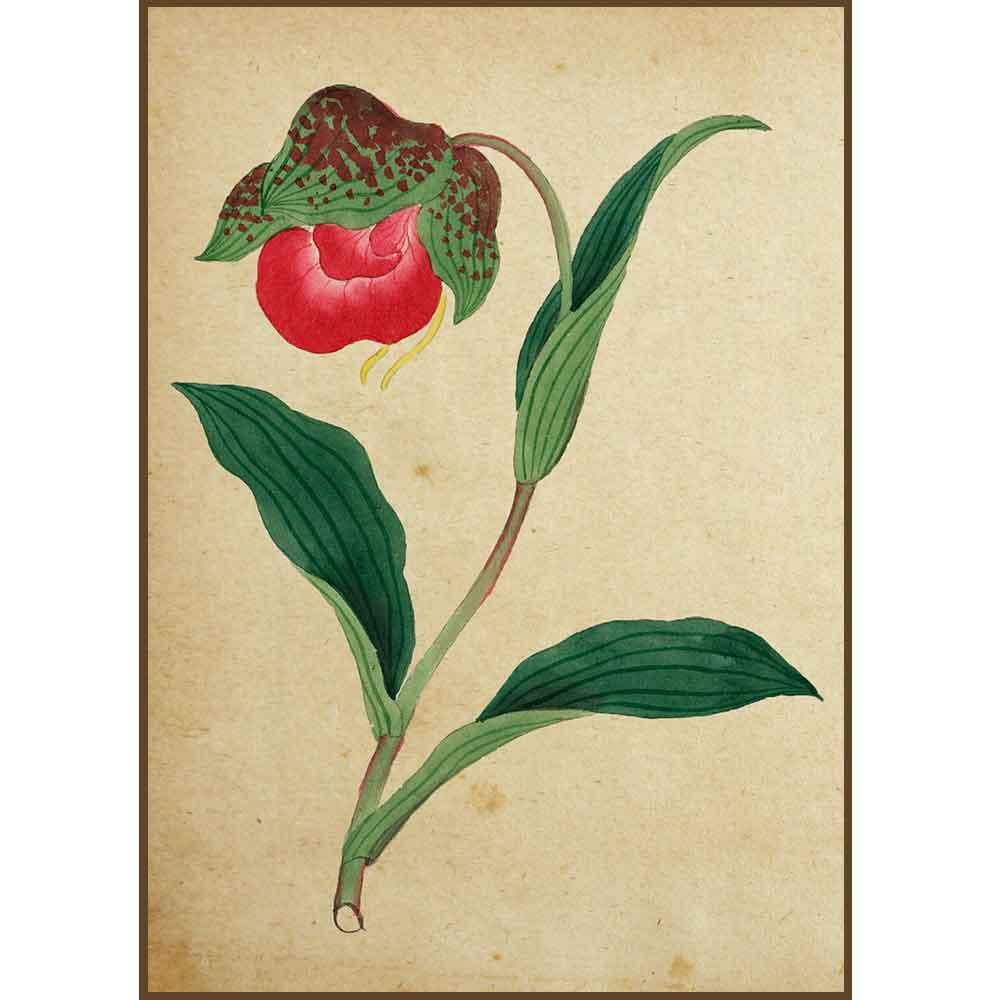 Quadro decorativo Flores em canvas - AGFL023