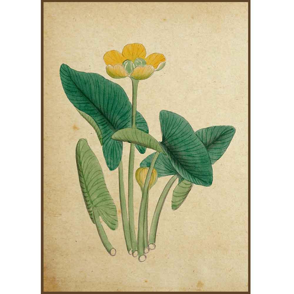 Quadro decorativo Flores em canvas - AGFL025